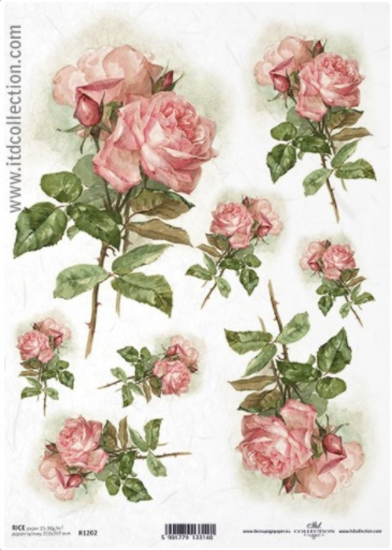 Ροζ τριαντάφυλλα 1202