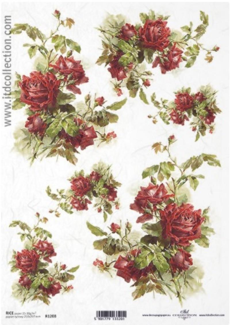 τριαντάφυλλο Νο1