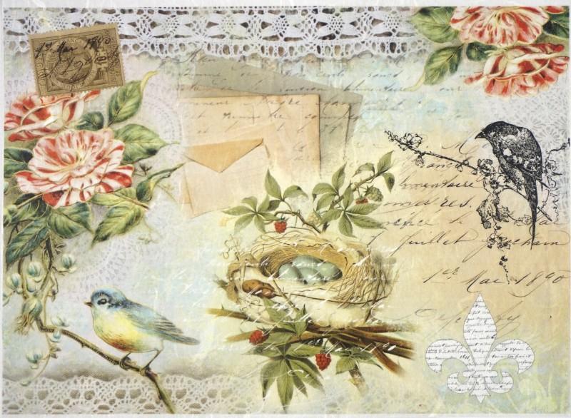 Ριζόχαρτο Α4 40gr Birdcage on lace