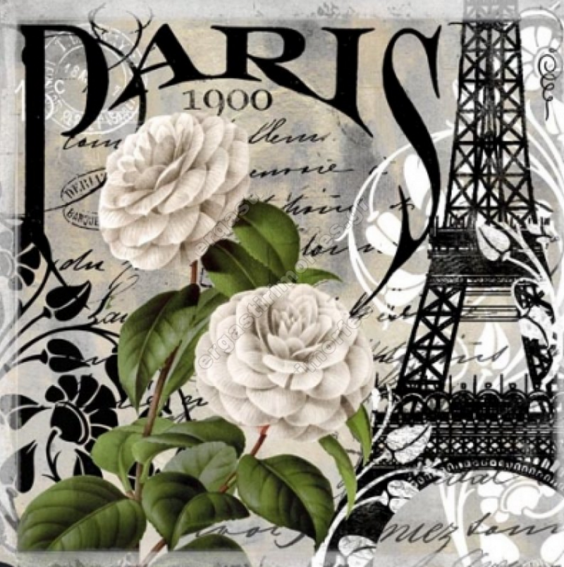 Retro PARIS