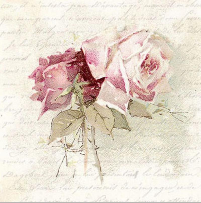 Υπέροχα τριαντάφυλλα