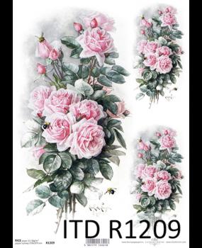 Ριζόχαρτο Α4 40gr  R1209