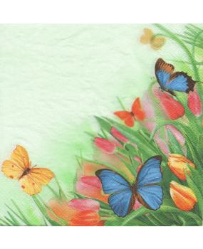 Tulips_and_Butterflies