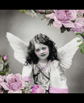 ροζ_αγγελακι