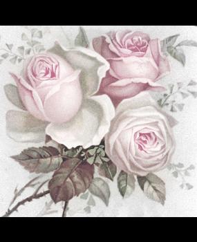 Ροζ τρυαντάφυλλα Νο 12