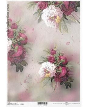 Ανθισμένα τριαντάφυλλα 1163